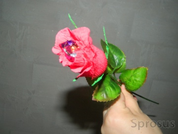 Объявления частные розы как подать бесплатное объявление в астрахани